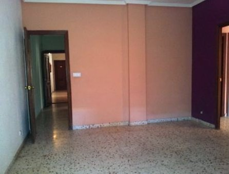 Apartamento en Elche/Elx (00561-0001) - foto2