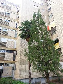 Apartamento en Alcalá de Henares (22167-0001) - foto0