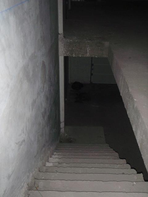 Locales en San Miguel de Abona (30472-0001) - foto5