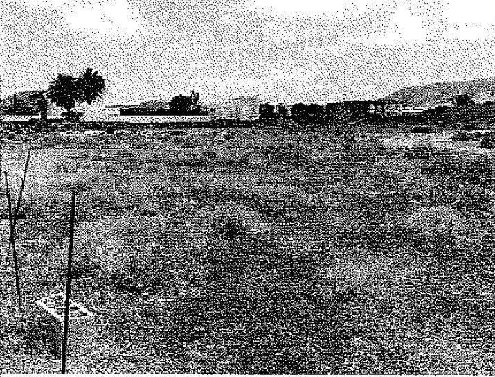 Solares en Oliva (La) (31215-0001) - foto0