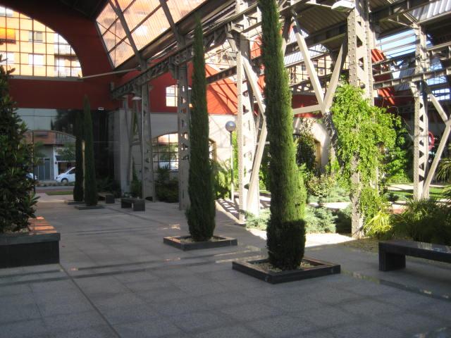 Apartamento en Valladolid (31543-0001) - foto6
