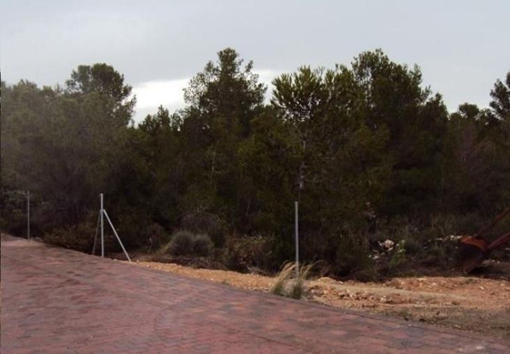 Solares en Mont-roig del Camp (32385-0001) - foto0