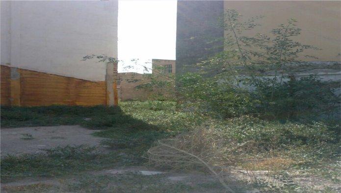 Solares en Murcia (Solar en Av Libertad ) - foto2