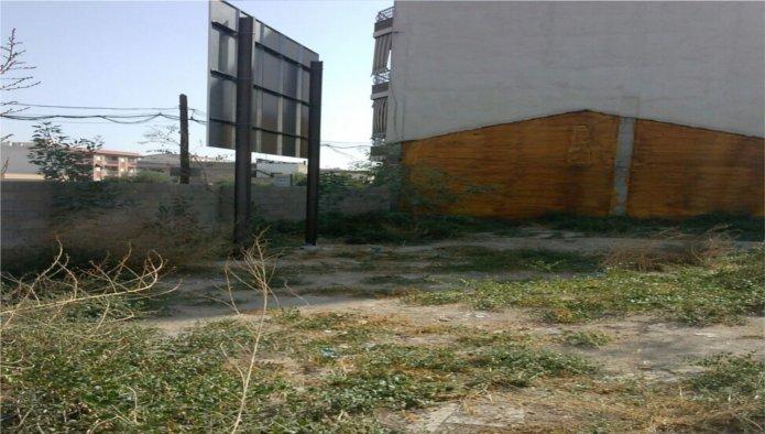 Solares en Murcia (Solar en Av Libertad ) - foto0