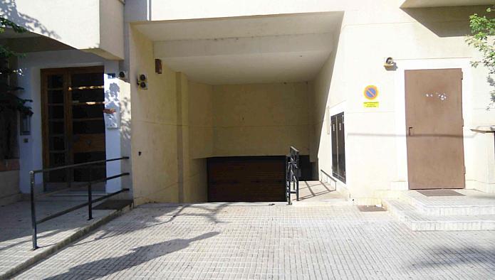 Garaje en Alcúdia (24824-0002) - foto0