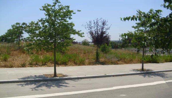 115105 - Solar Urbano en venta en Sabadell / C. França n Plan Parcial Can Gambus Polígono