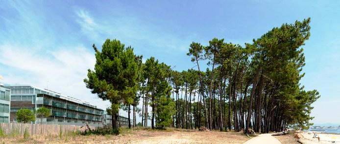 D�plex en Illa de Arousa (A) (M59387) - foto16