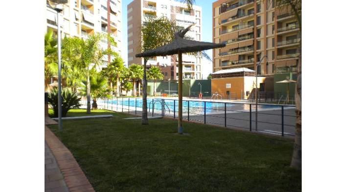 Bajo en Alicante/Alacant (33520-0001) - foto2