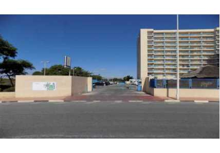 Apartamento en Guardamar del Segura (M61838) - foto19
