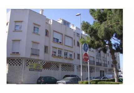 Locales en Pilar de la Horadada (Edificio Siroco) - foto6