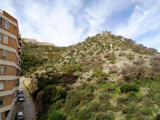 Piso en Alicante/Alacant (Vivienda Virgen del Socorro) - foto1