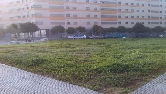 Solares en Huelva (38373-0001) - foto1