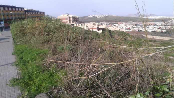 Solares en Palmas de Gran Canaria (Las) (M71535) - foto1