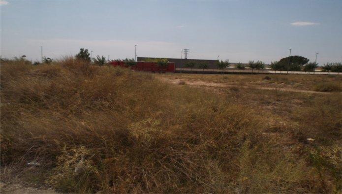 Solares en Balaguer (M72094) - foto2