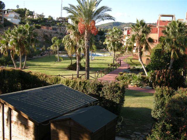 �tico en Marbella (42503-0001) - foto10