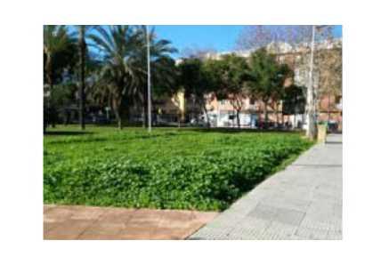 Solares en Huelva - 0