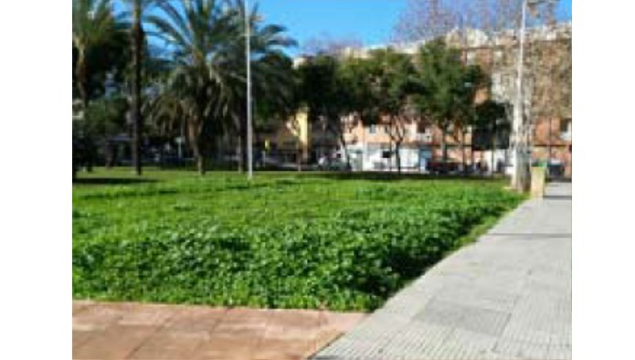 Solares en Huelva (38381-0001) - foto1