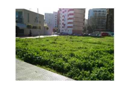 Solares en Huelva (38381-0001) - foto5