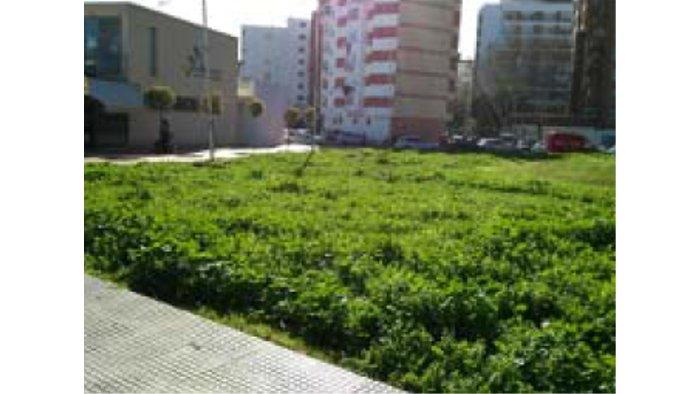 Solares en Huelva (38381-0001) - foto0