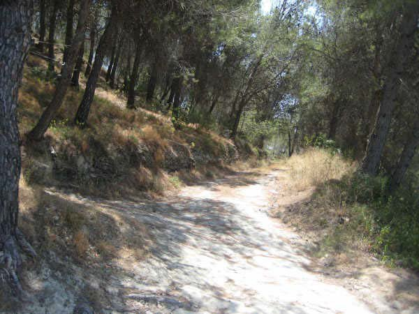Solares en Xàtiva (58295-0001) - foto1