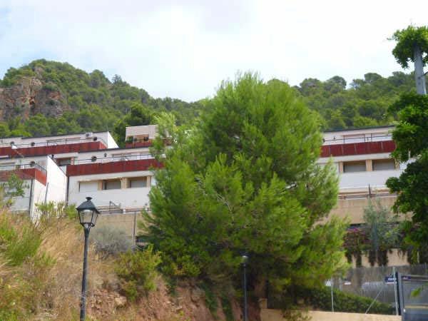 Apartamento en N�quera (01118-0001) - foto0