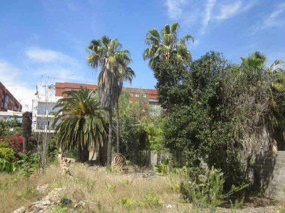 Solares en Valencia (56882-0001) - foto2