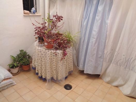Piso en Alicante/Alacant (Piso en Marqués de Molins) - foto2