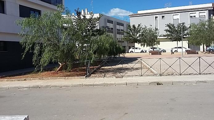 Solares en Artana (Suelo Urbano en Artana) - foto15