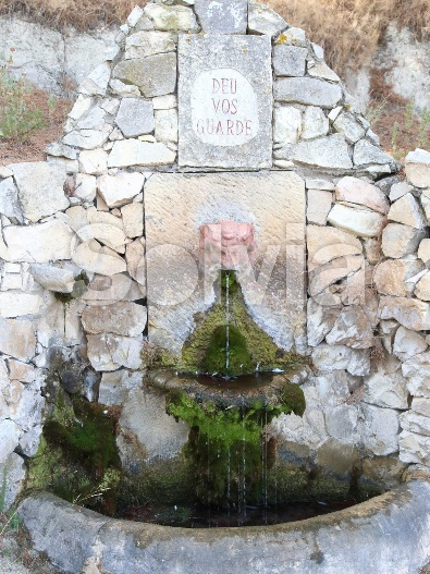 Cortijo en Castalla (Finca en Castalla) - foto16