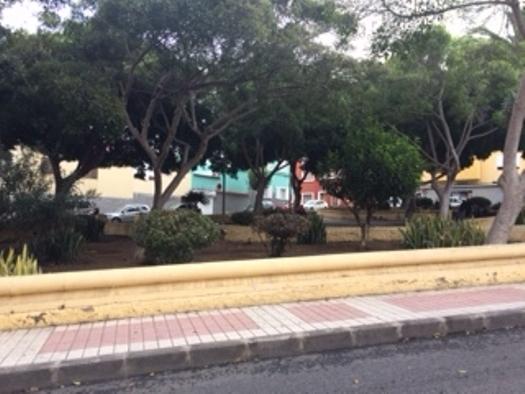 Locales en Palmas de Gran Canaria (Las) (Local Comercial Schamann) - foto10