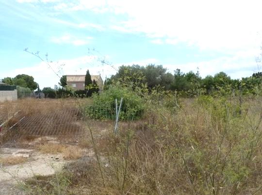 Solares en San Vicente del Raspeig (Solar en C/ Barranquet) - foto7
