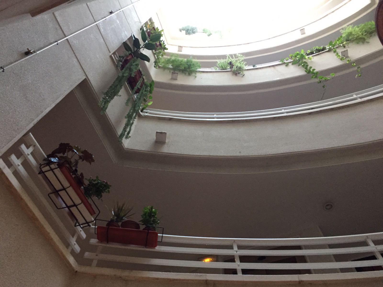 Apartamento en Torrevieja (Apartamento en Edificio San Luis) - foto4