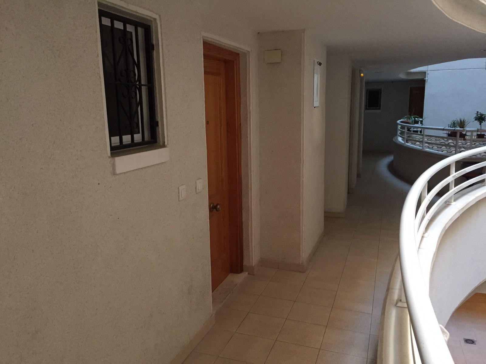 Apartamento en Torrevieja (Apartamento en Edificio San Luis) - foto5