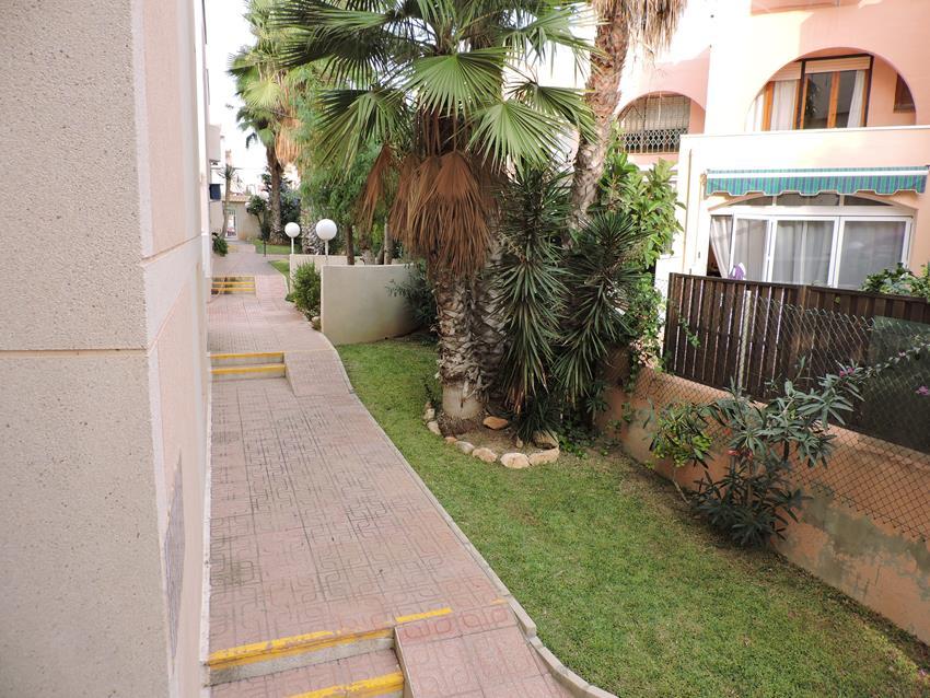 Apartamento en Torrevieja (Urbanización Los Frutales Fase IV) - foto13