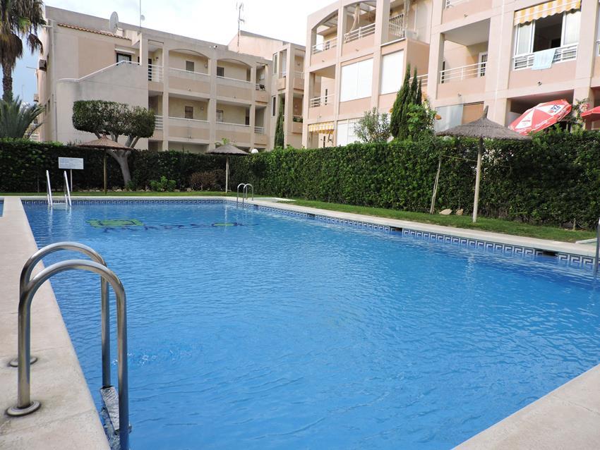 Apartamento en Torrevieja (Urbanización Los Frutales Fase IV) - foto11