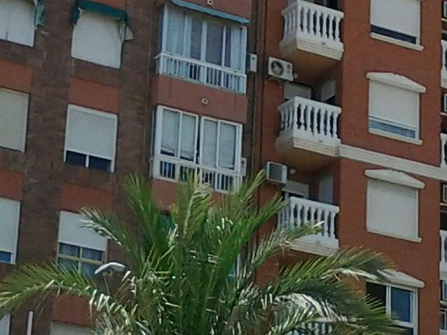 Piso en Alicante/Alacant (Vivienda Pradilla ) - foto18