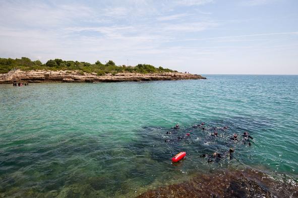 Piso en Ametlla de Mar (L') (M80055) - foto9