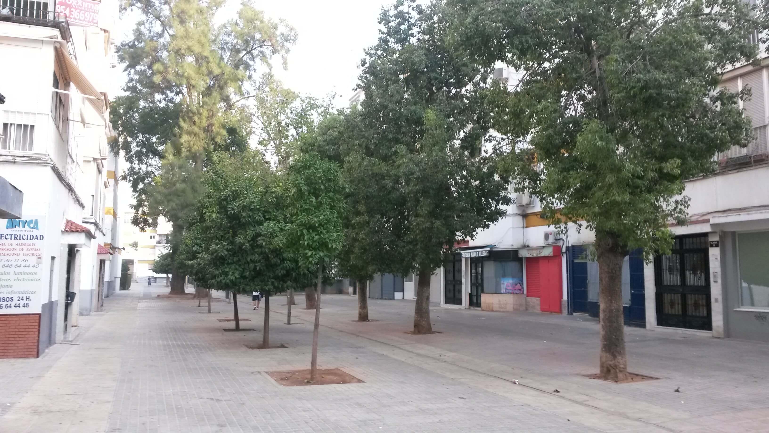 Piso en Sevilla (Piso Villegas ) - foto14