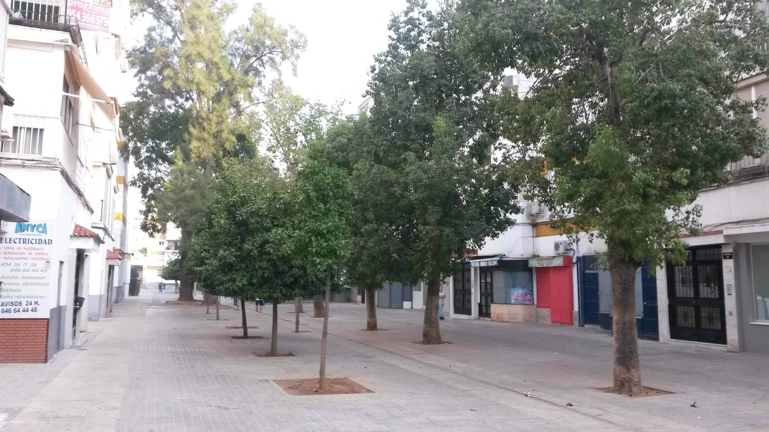 Piso en Sevilla (Piso Villegas ) - foto18