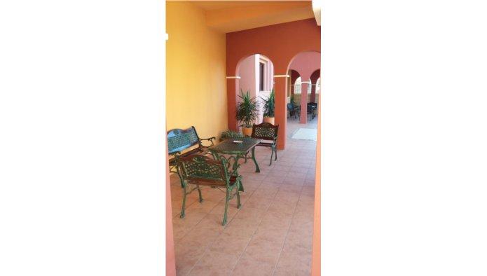 Apartamento en Torrevieja (Apartamento el Torrevieja) - foto3