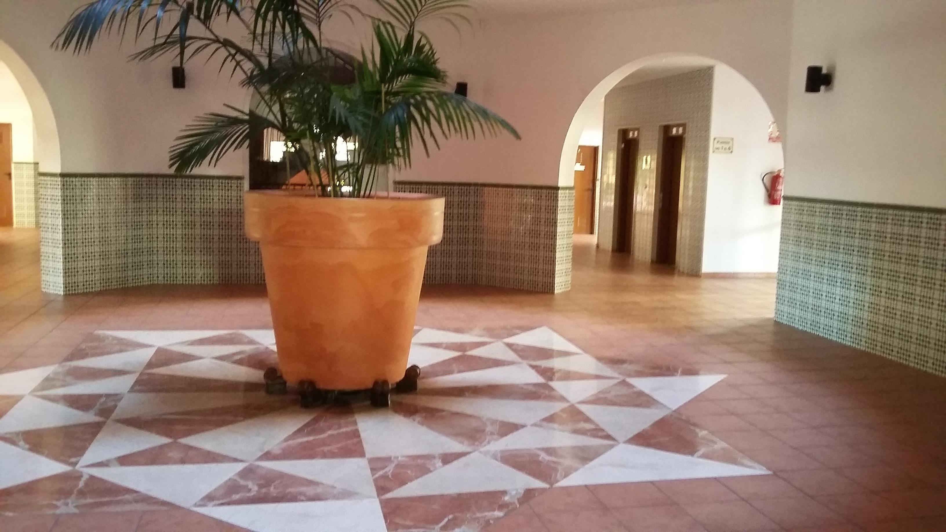 Apartamento en Torrevieja (Apartamento el Torrevieja) - foto1