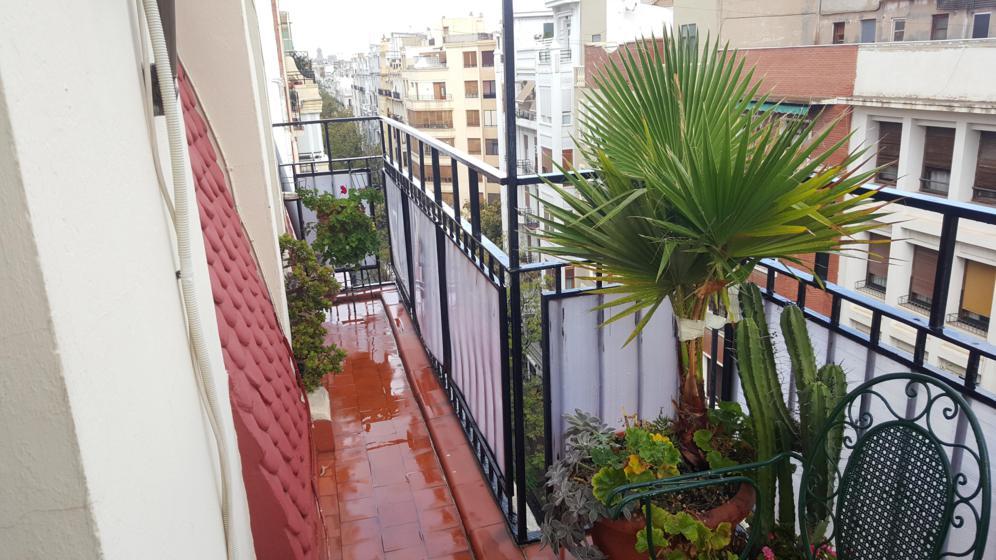 Piso en Valencia (Vivienda Ciscar) - foto15
