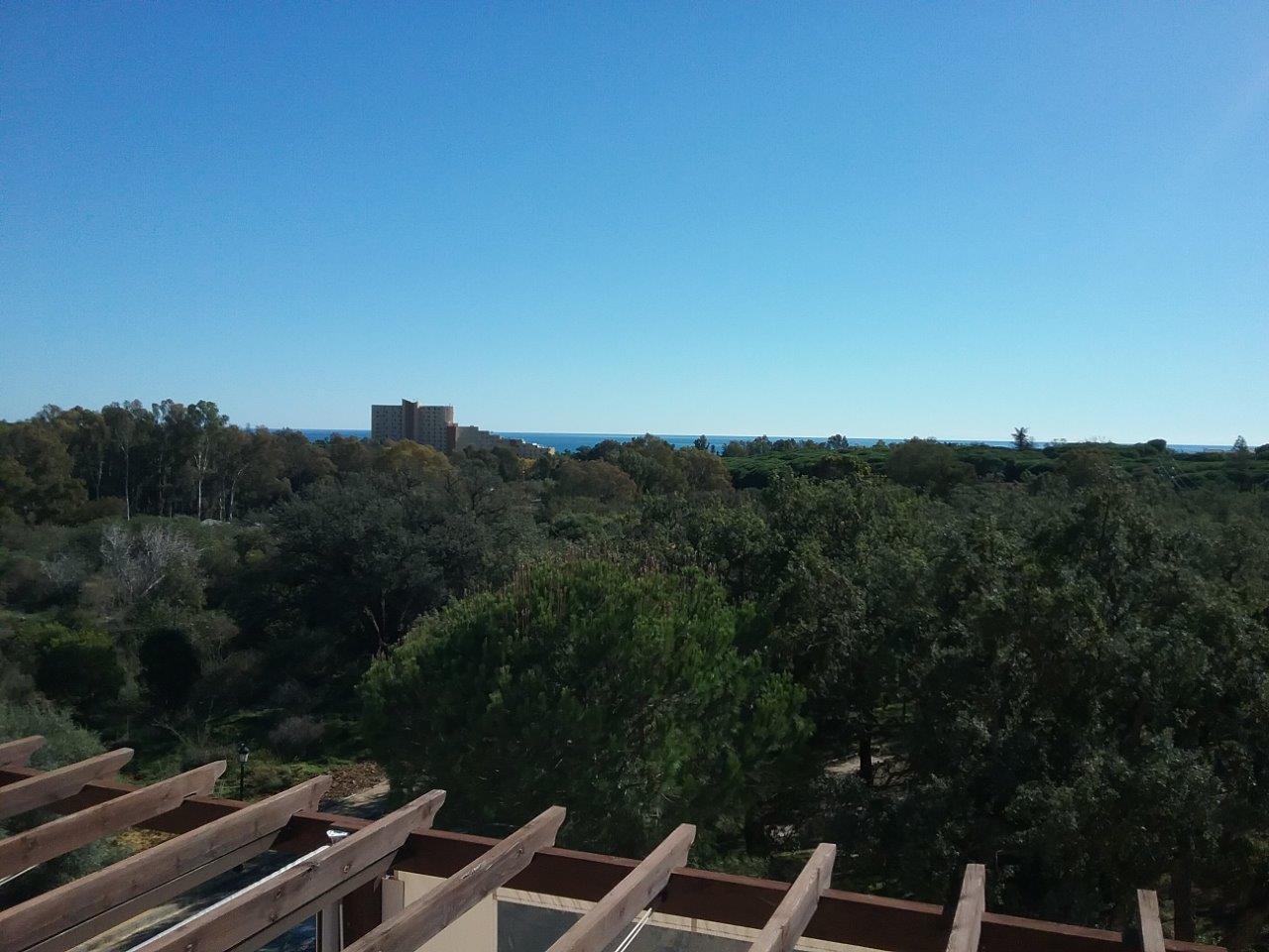Ático en Marbella (Ático tipo dúplex en Marbella) - foto3