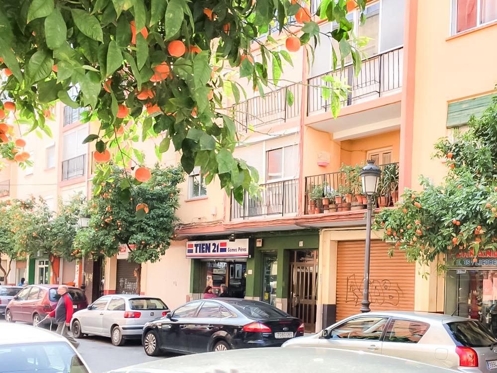 182575 - Local Comercial en venta en Valencia / Local en Valencia