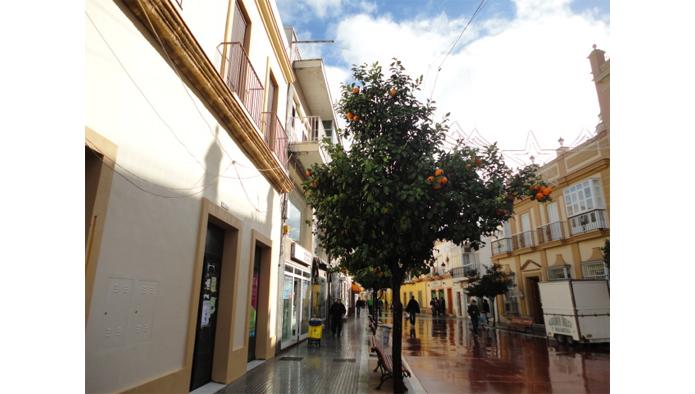 Locales en Puerto Real (M18026) - foto1