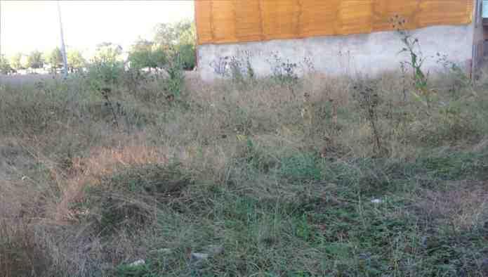 Solares en Santa Eug�nia de Berga (09335-9901) - foto2